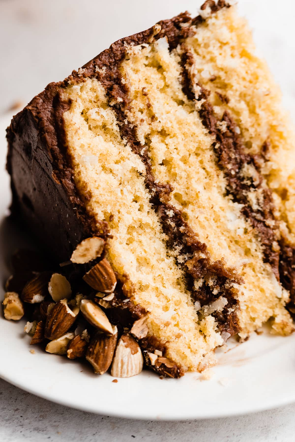 Almond Joy Cake-Coconut Cake with Chocolate Frosting and Crunchy Almonds. Tastes just like an almond joy candy bar!