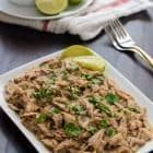 Easy Salsa Verde Slow Cooker Pulled Pork