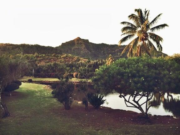 Smith's Luau Garden