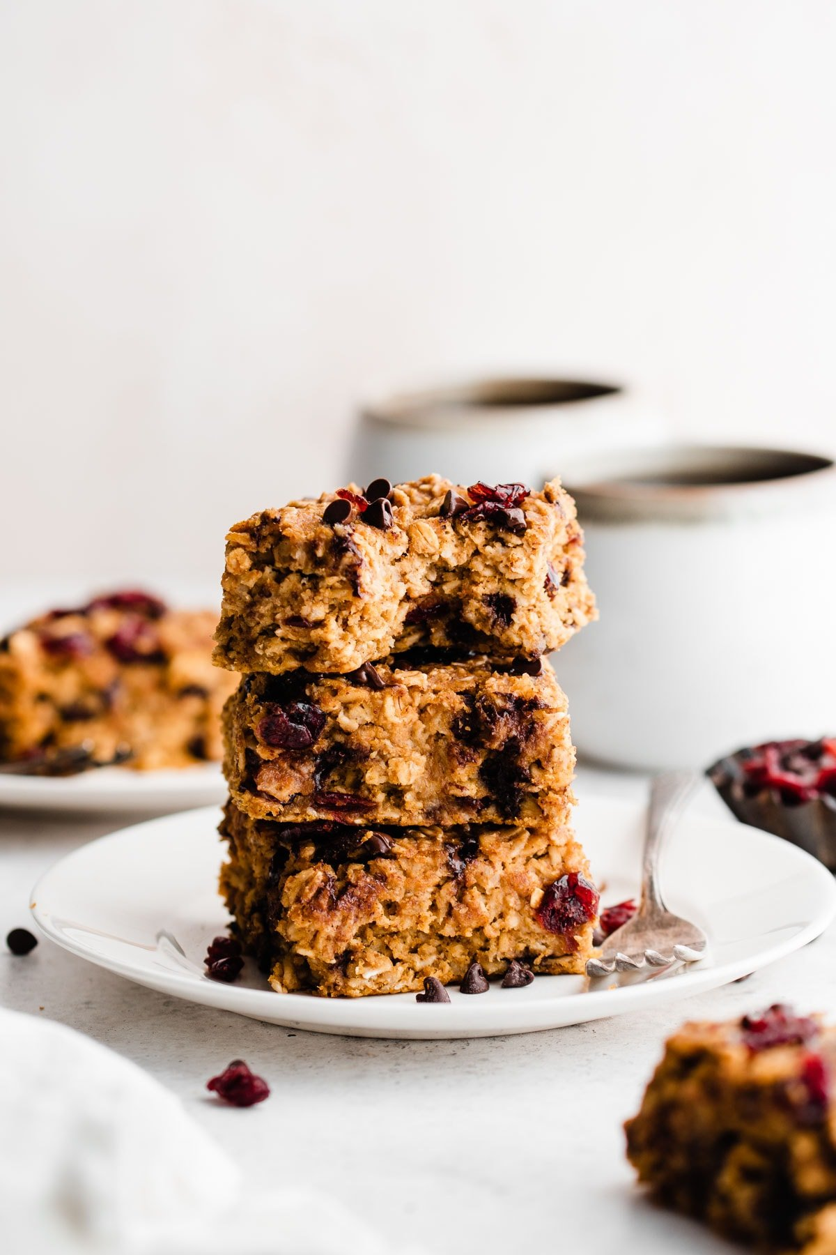 Gluten Free Pumpkin Peanut Butter Oatmeal Bars with Chocolate Chips and Cranberries