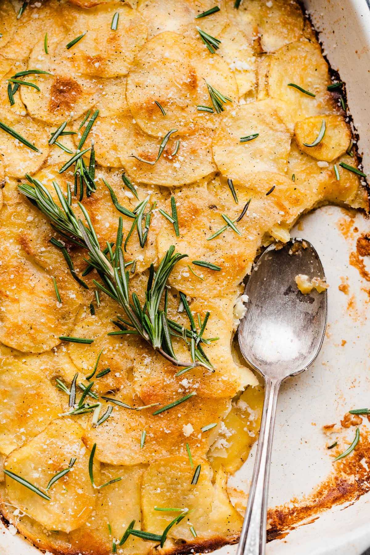 Garlic, goat cheese, and fresh herbs on a cutting board