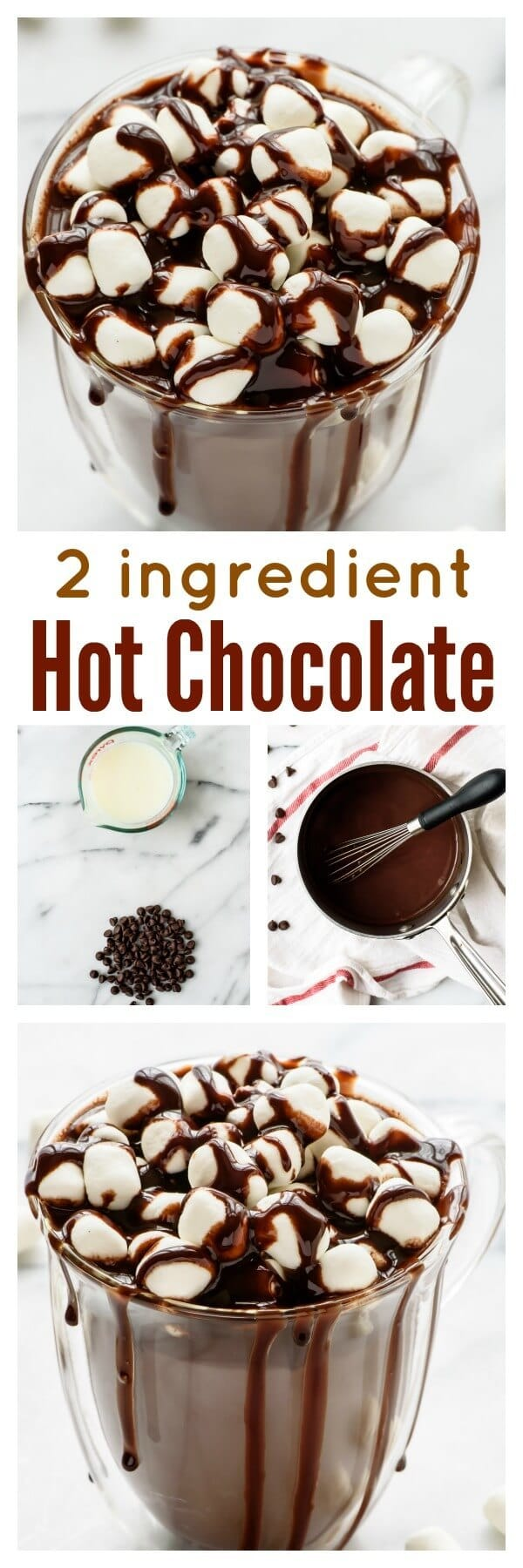 How to make the perfect cup of hot chocolate with only TWO ingredients! You'll never buy a hot chocolate mix again.
