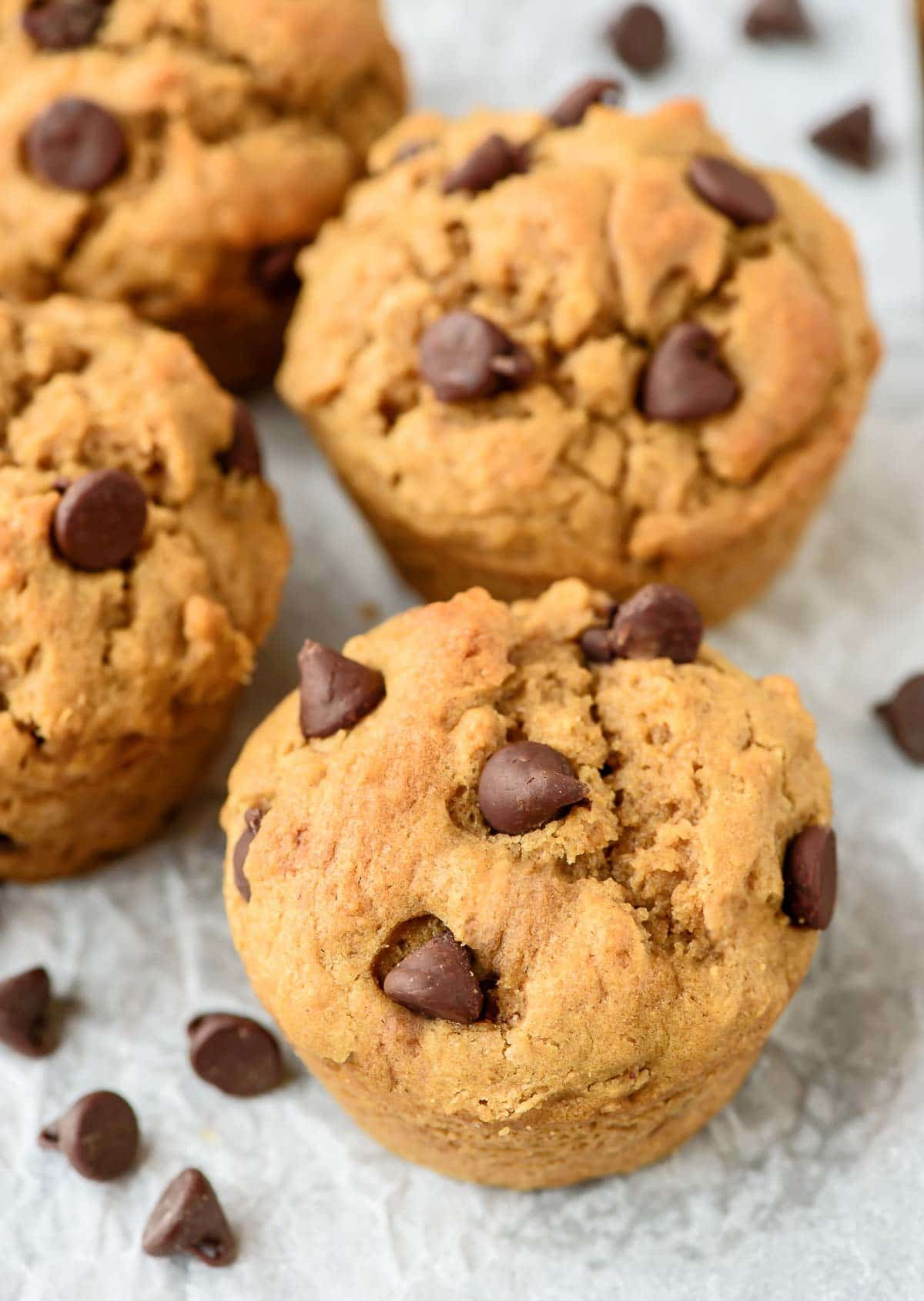 Chocolate Chip Peanut Butter Muffins. Fluffy, moist and PACKED with ...