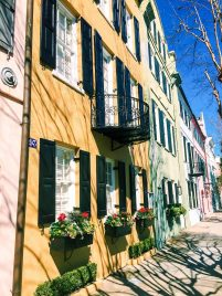 Things to do in Charleston, South Carolina