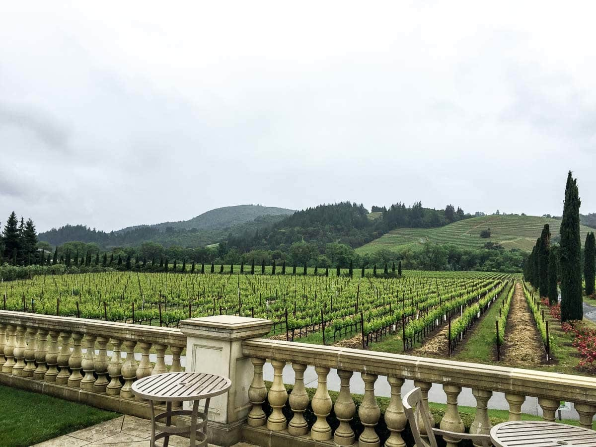 one of the best Sonoma wineries, Ferarri-Carano gardens