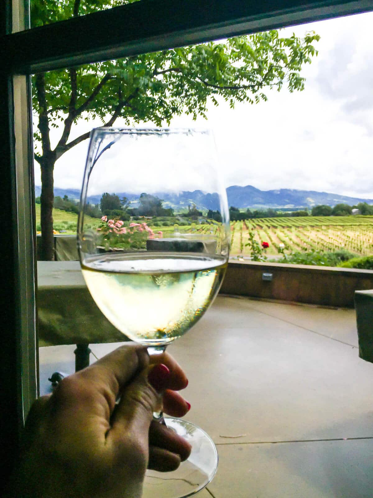 The best restaurant in Sonoma Valley—Rustic at Francis Ford Coppola