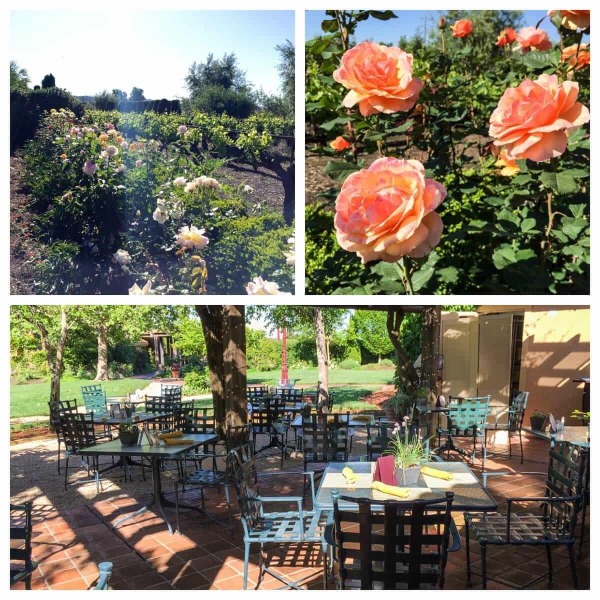 Best Sonoma Hotel—Vintner's Inn
