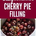 Make the most of summer with this easy naturally sweetened homemade cherry pie filling. SO much better than canned cherry pie filling and this pie filling has no refined sugar! @wellplated #pie #dessert