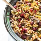 Crock Pot Wild Rice Stuffing