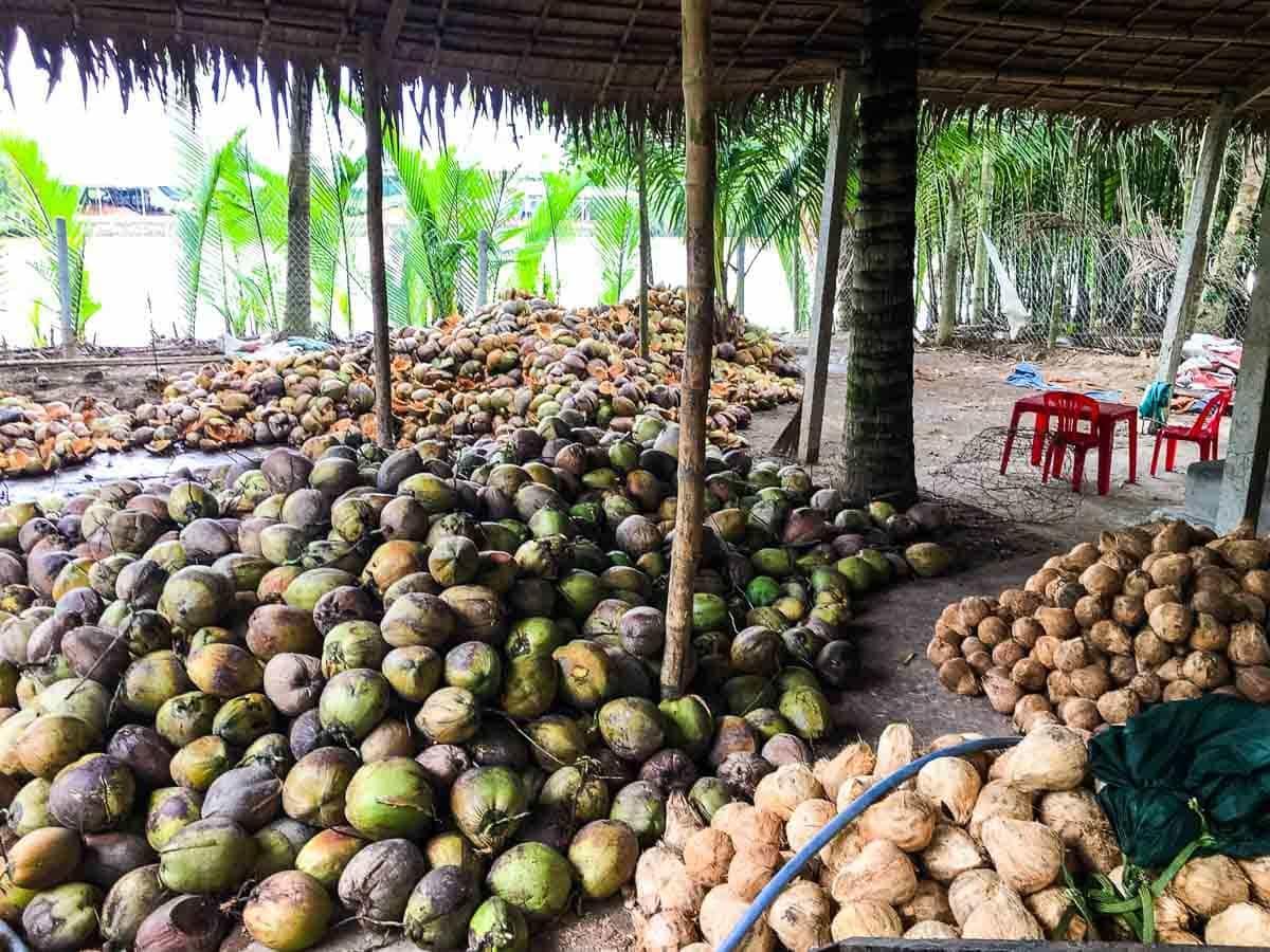 mekong-coconuts