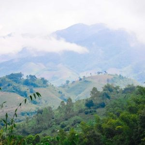 Misty mountains in northern Thailand