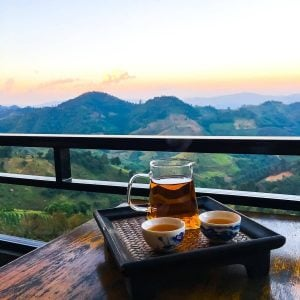 Tea fields of northern Thailand - use this complete Thailand travel guide to plan your visit! | from wellplated.com@wellplated