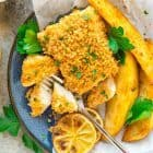 "overhead photo of a blue plate of oven baked fish with a panko crust and oven baked ""chips"""