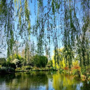 Giverny, France. Monet's home and gardens