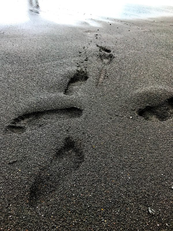 Waianapanapa Black Sand Beach. One of the best beaches in Maui!