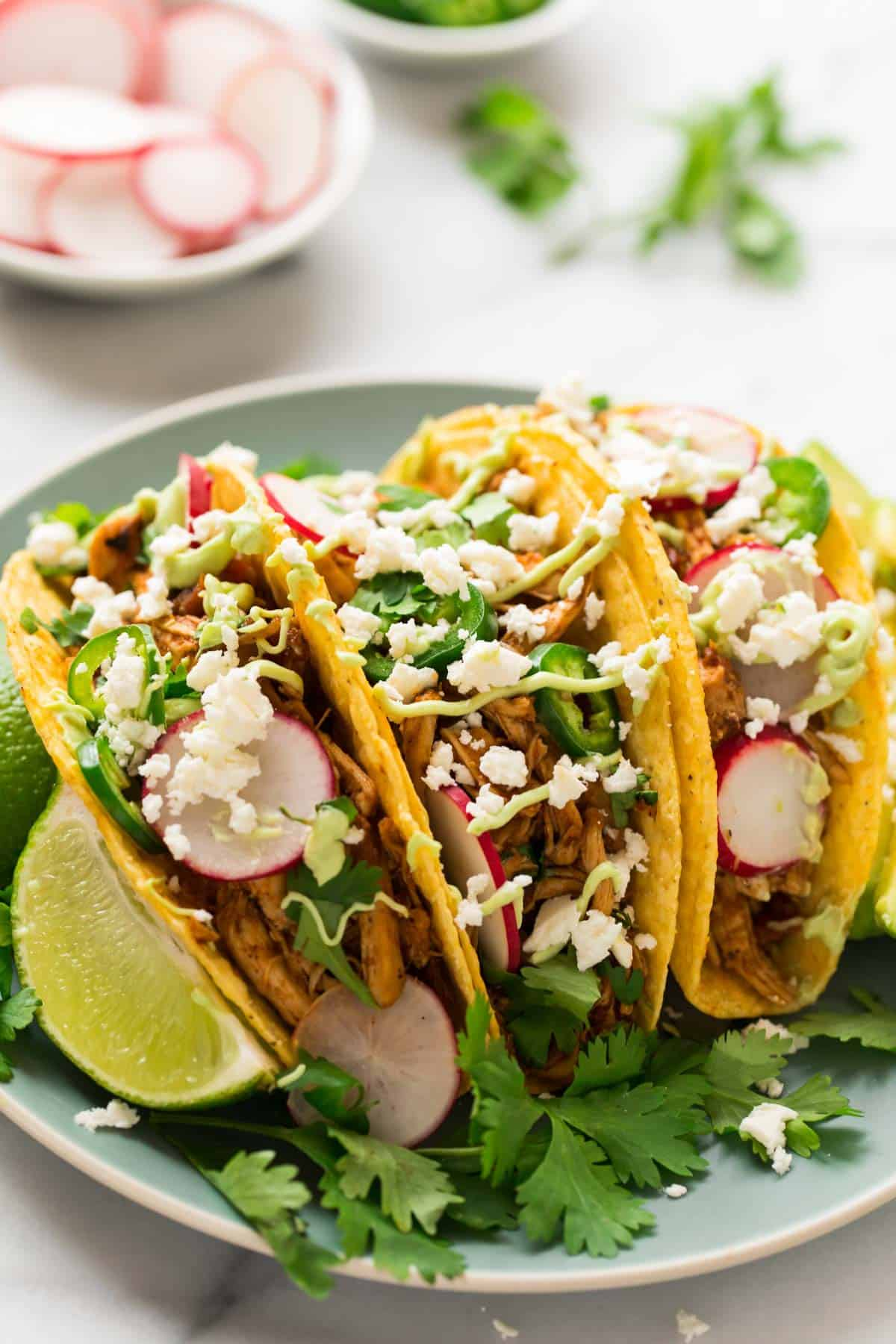 Instant Pot Shredded Chicken Tacos in hard corn shells on a plate garnished with jalapenos, radish, queso fresco, cilantro and avocado crema