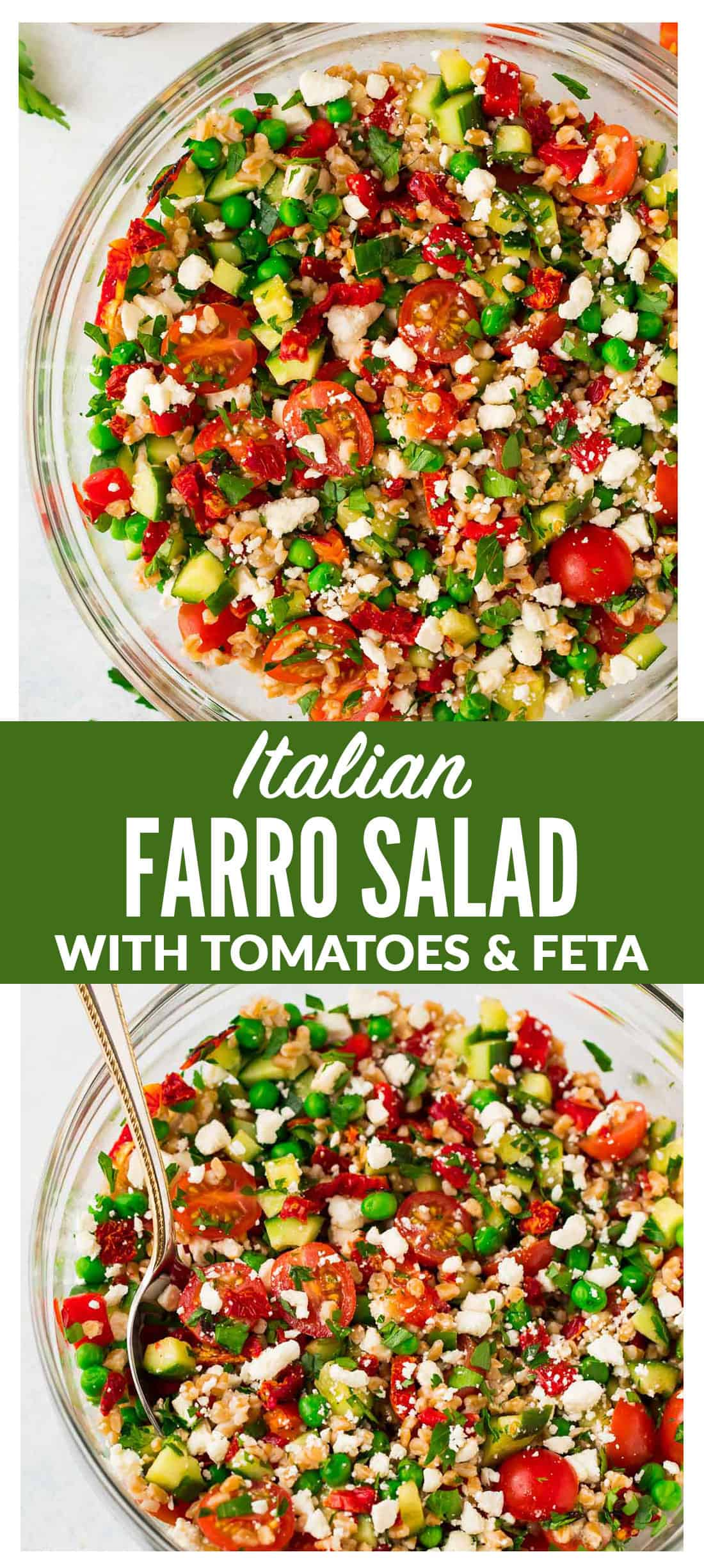 Italian Farro Salad with feta, fresh tomatoes, veggies, and a bright red wine vinaigrette. Delicious, filling vegetarian recipe that's perfect for healthy meal prep. Big enough for a crowd and tastes great leftover and at room temperature, so it's a perfect potluck and barbecue side dish recipe too! #italian #farro #salad #healthy
