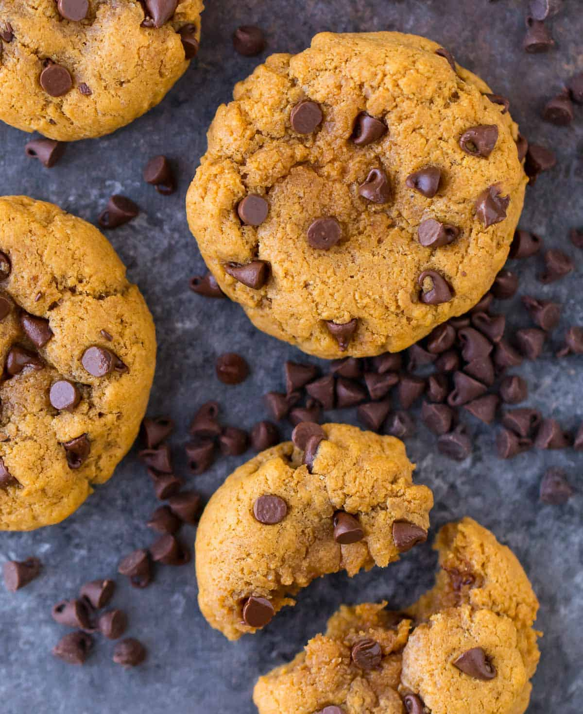 These peanut butter chocolate chip protein cookies are irresistible! Easy, gluten free, and packed with 7 grams protein each!