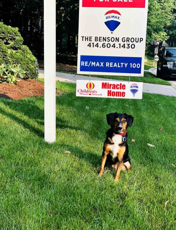 A real estate sign in a yard with a dog in front