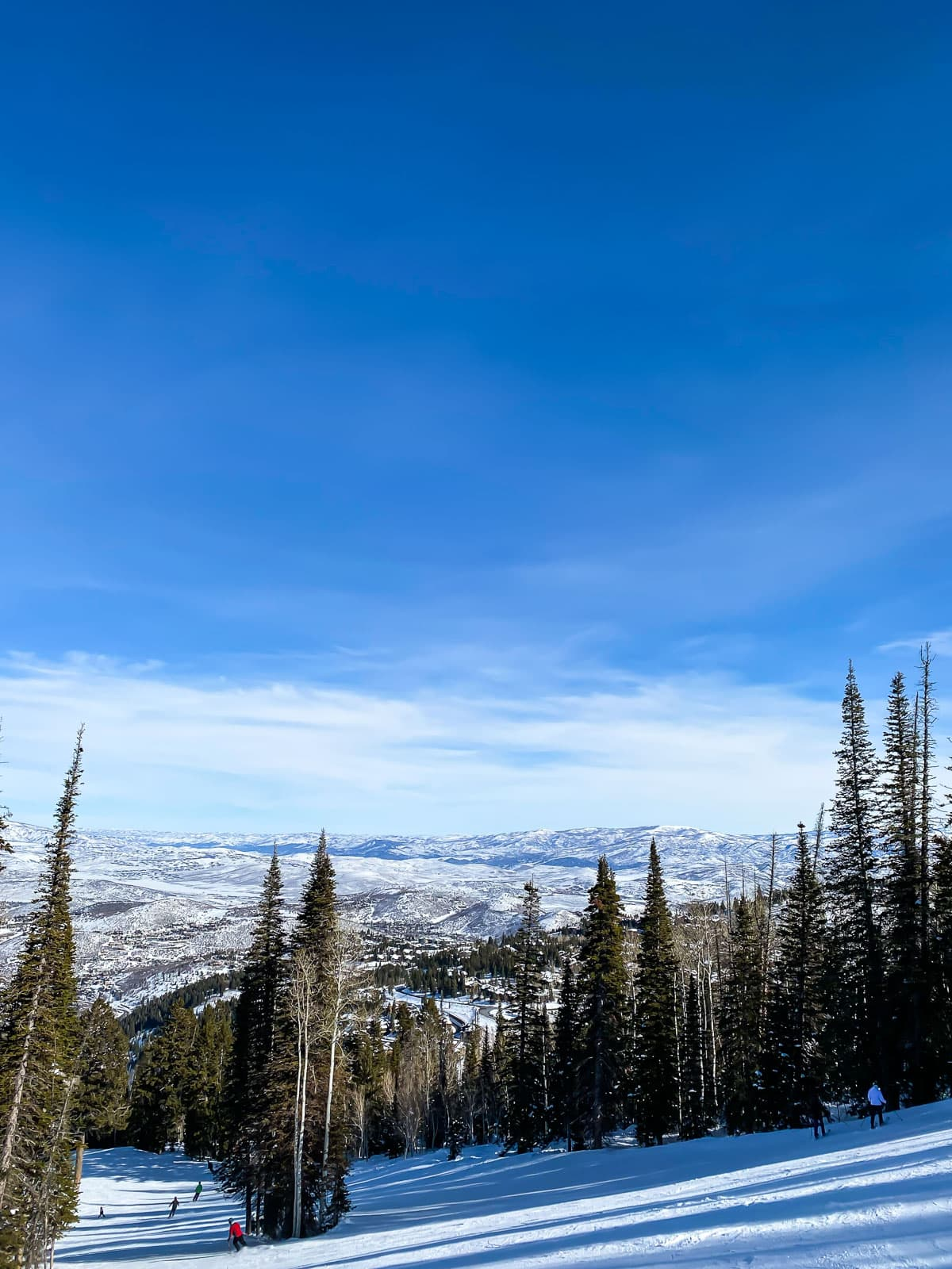Mountain at Deer Valley with Trees