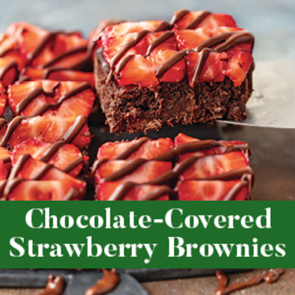 Chocolate Covered Strawberry Brownies from The Well Plated Cookbook
