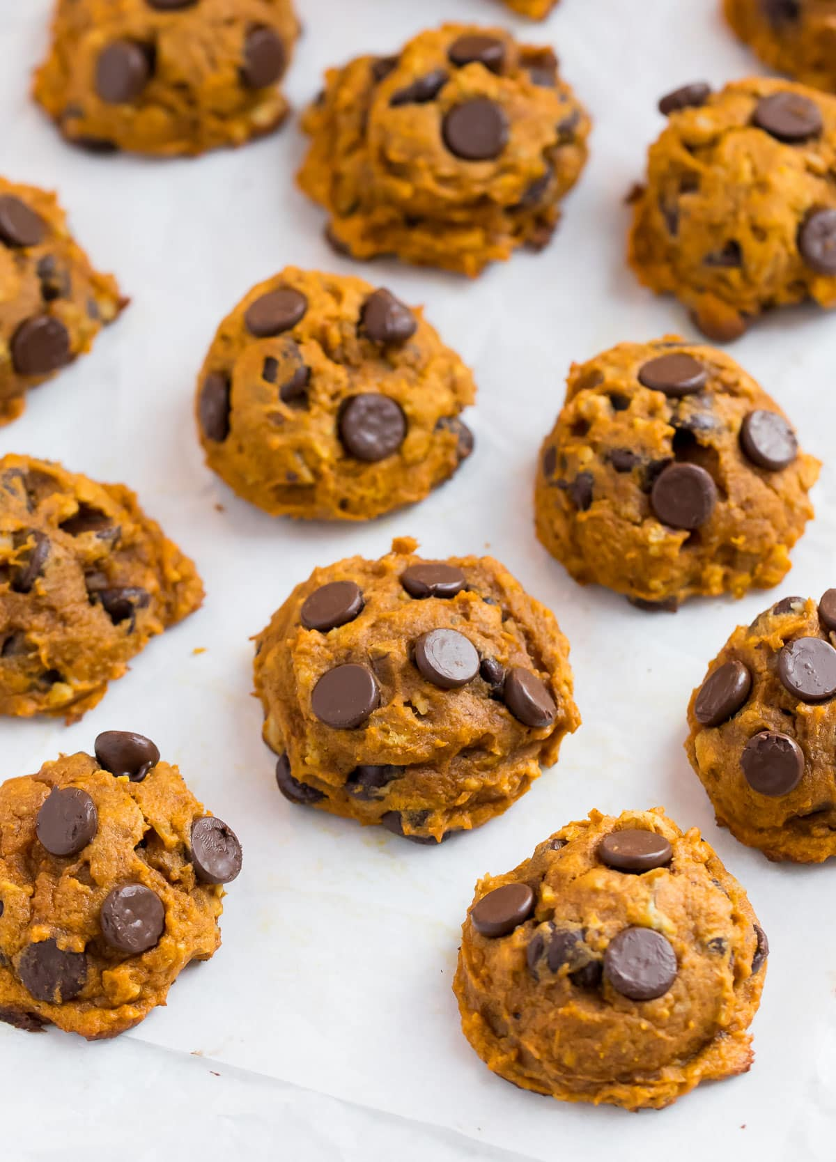 Healthy chocolate chip pumpkin cookies