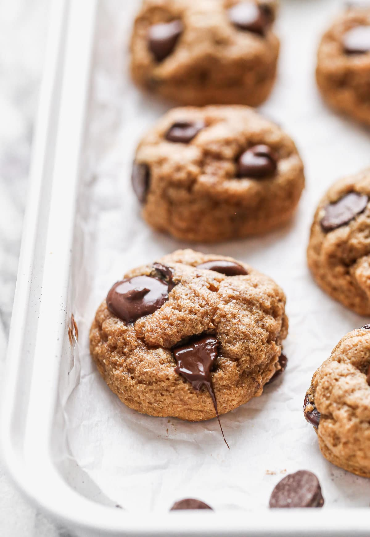 Gooey whole wheat chocolate chip cookies
