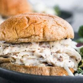shredded chicken sandwich with Greek yogurt